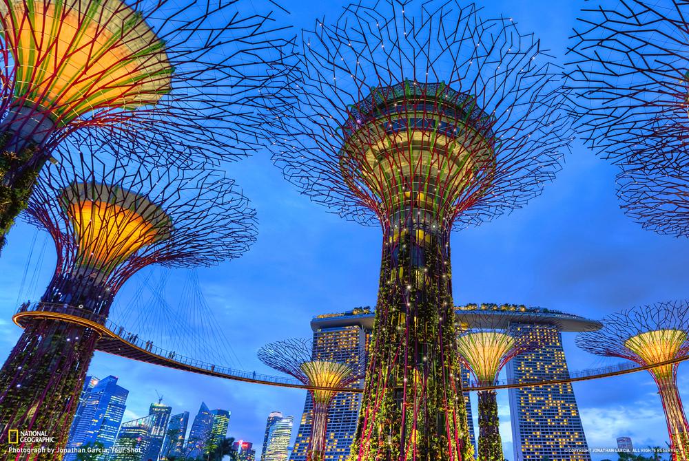 Kelionė į Singapūrą (egzotinės kelionės) 03