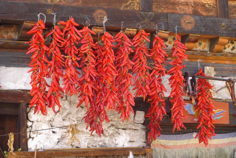 Kelionė į Nepalą ir Butaną (egzotinės kelionės) 10