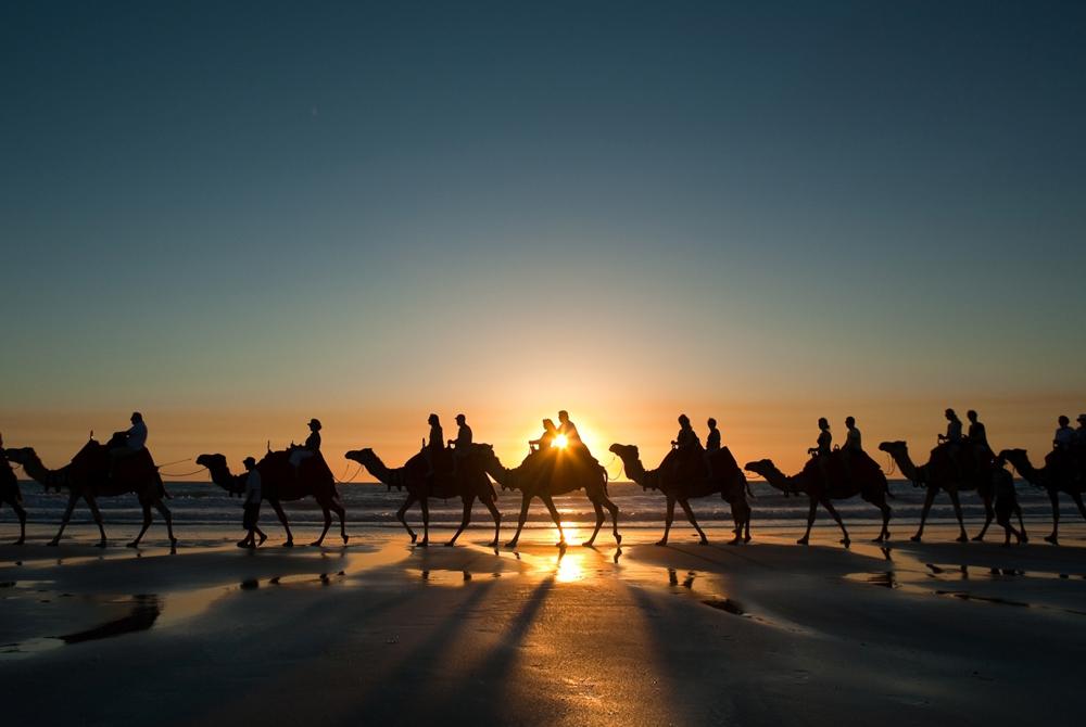 Kelionė į Egiptą (egzotinės kelionės) 1