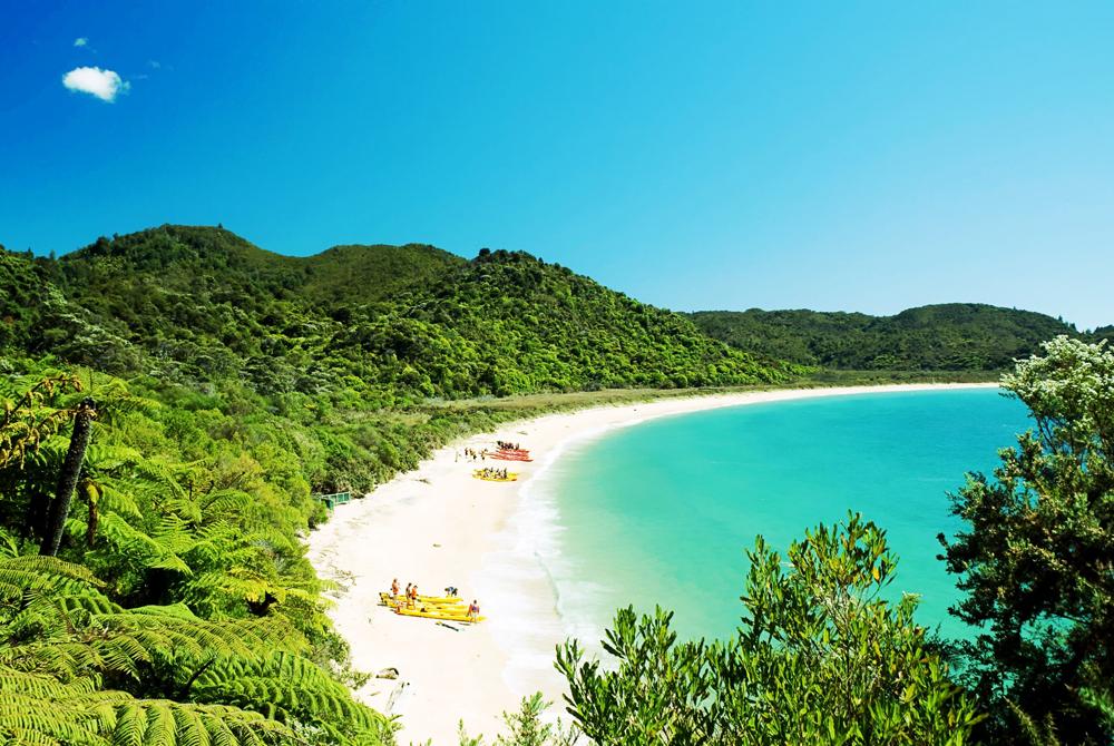 Kelionė į Naująją Zelandiją (egzotinės kelionės) 15