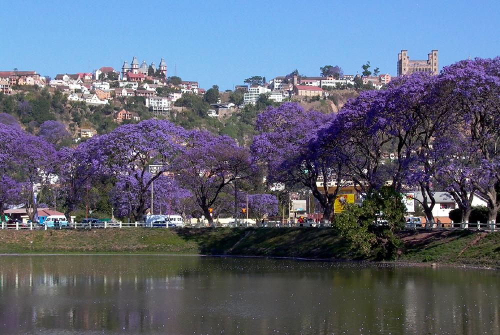 Kelionė į Madagaskarą (egzotinės kelionės) 19