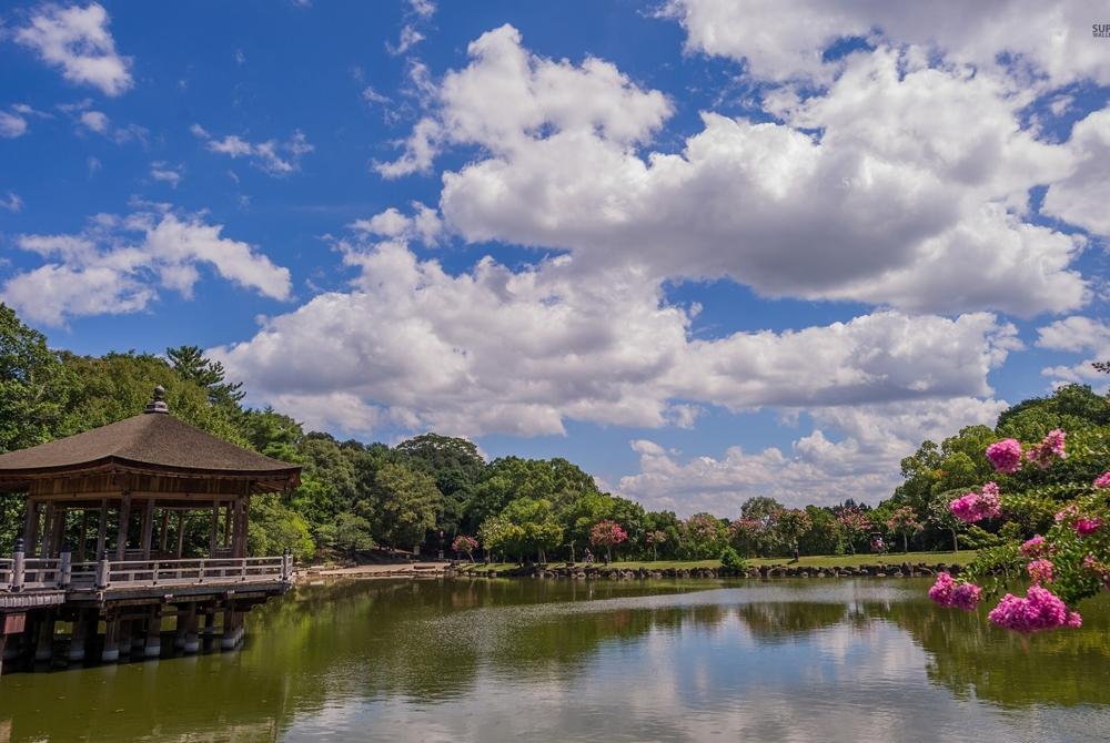 Kelionė į Japoniją (egzotinės kelionės) 20