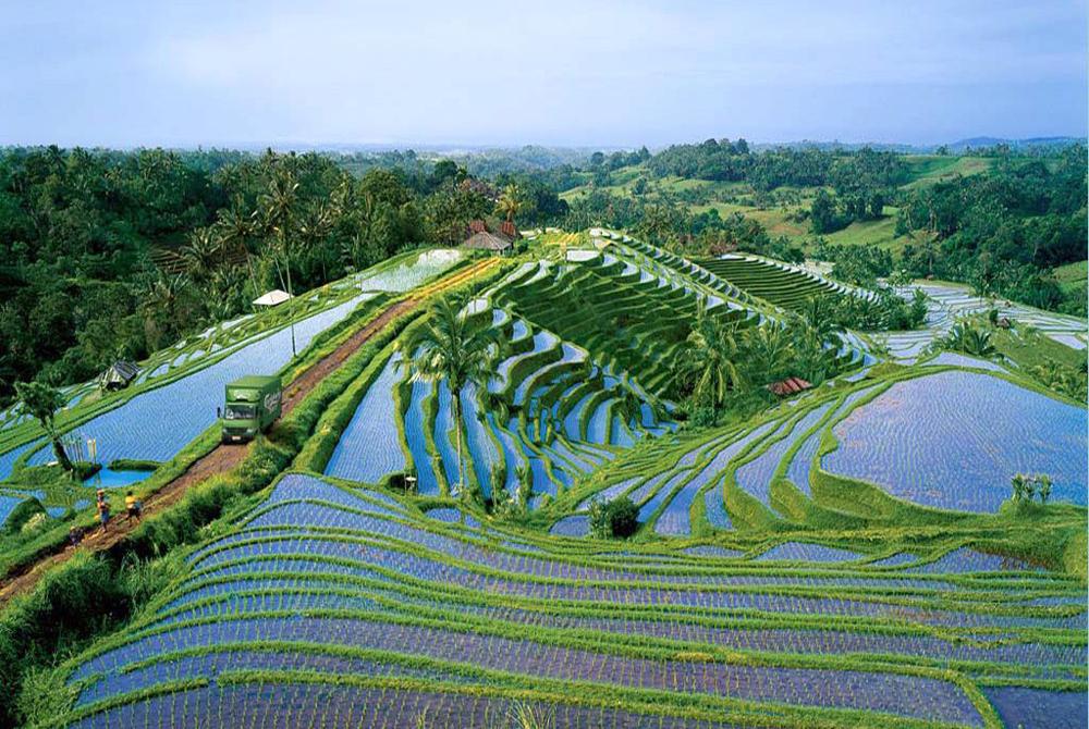 Kelionė į Indoneziją (egzotinės kelionės) 25