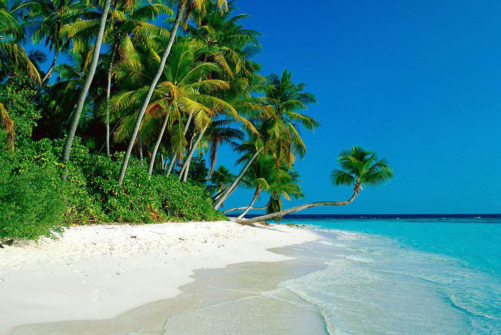 Kelionė į Maldyvus (egzotinės kelionės) 26