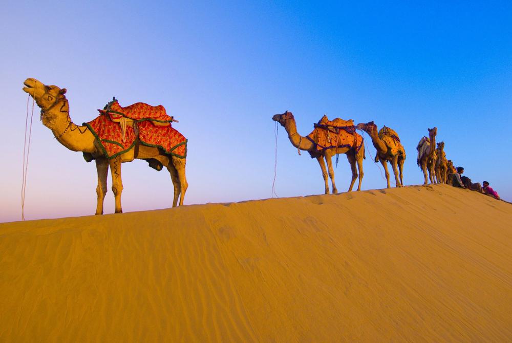 Kelionė į Indiją (egzotinės kelionės) 6