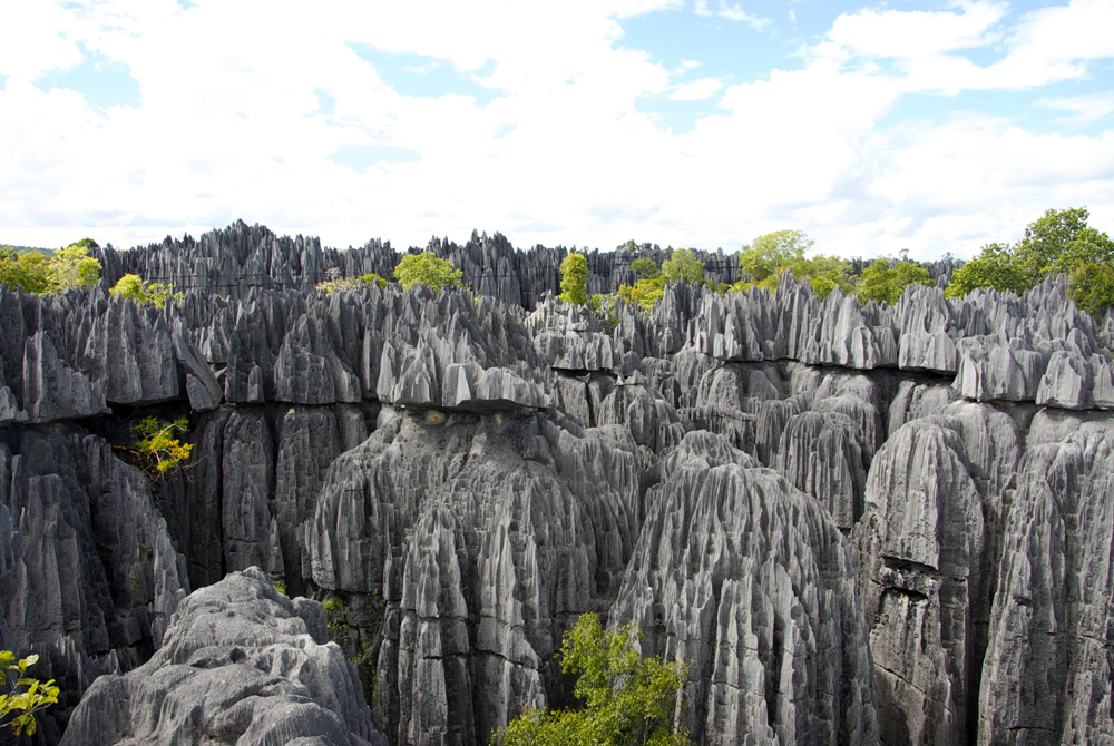 Kelionė į Madagaskarą (egzotinės kelionės) 7