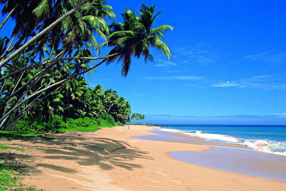 Kelionė į Šri Lanką (egzotinės kelionės) 9